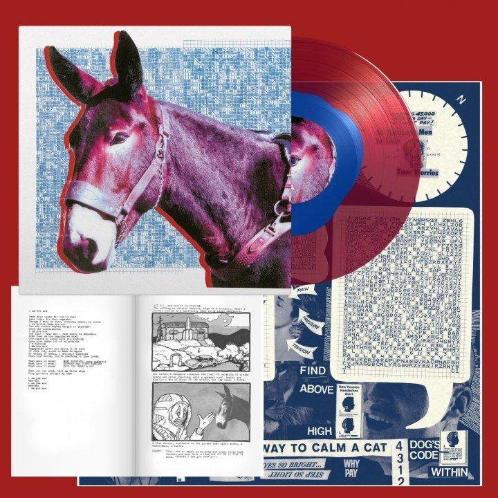 protomartyr record donkey